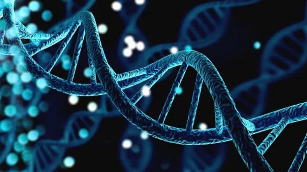 Illustration of a gene cell